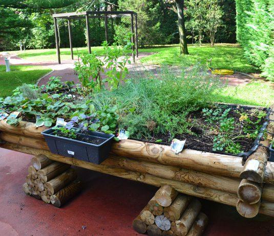 jardin-ehpa-borgo